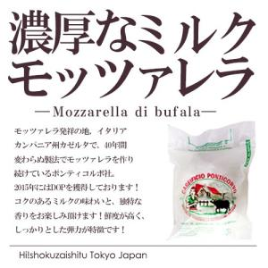 モッツァレラ チーズ ポンティコルボ モッツァレラ ディ ブッファラ カンパーニャDOP カンパーニャ州カゼルタ|hi-syokuzaishitsu