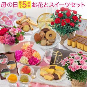 母の日 3種類から選べるギフト スイーツ 花鉢 花束 アレン...