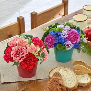 母の日父の日 「ペアアレンジメントのセット」  日比谷花壇...