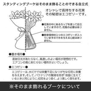 日比谷花壇 ディズニー  そのまま飾れるブーケ「TOY STORY」 disney_y|hibiyakadan|04