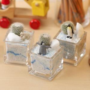 日比谷花壇 ちいさな植物と一緒に楽しむジオラマ「南極のペンギンたち」ミニサイズ3個セット ネット限定 おしゃれ インテリア|hibiyakadan