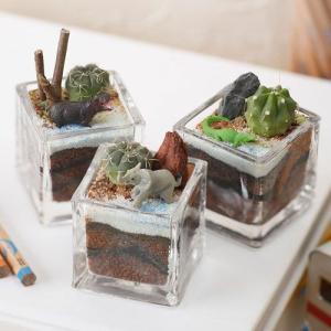 日比谷花壇 ちいさな植物と一緒に楽しむジオラマ「ナイルのゾウたち」ミニサイズ3個セット ネット限定 おしゃれ インテリア|hibiyakadan