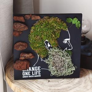 日比谷花壇 観葉植物  URBAN GREEN MAKERS グリーンアートキット「メン」|hibiyakadan