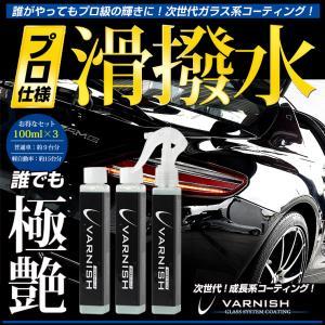 数量割引あり ガラス系コーティング剤 1本で約2年分 3本セット 車 成長系 コーティング バーニッシュ 持続6カ月 hid-led-carpartsshop