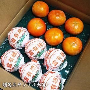 岐阜県産 贈答用「吉田さんの富有柿2段箱2Lサイズ 24個」(送料無料) hida-mino-furusato 03