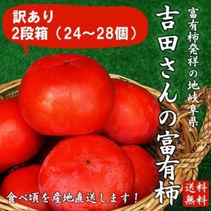 岐阜県産訳あり「吉田さんの富有柿2段箱L〜2Lサイズ 24〜28個」(送料無料)|hida-mino-furusato