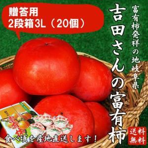 岐阜県産 贈答用「吉田さんの富有柿2段箱3Lサイズ 20個」(送料無料)|hida-mino-furusato