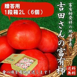 岐阜県産 贈答用「吉田さんの富有柿1段箱2Lサイズ 6個」(送料無料)|hida-mino-furusato
