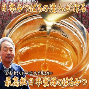 日本みつばちのハチミツ 250g(送料無料)|hida-mino-furusato