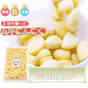 岐阜県産ムキにんにく4kg(1kg×4袋)(冷凍)(送料無料)|hida-mino-furusato