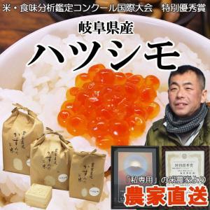 農家直送。岐阜県のブランド米「ハツシモ」(白米)27kg(送料無料)|hida-mino-furusato