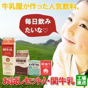 関牛乳お試しセットA(関牛乳・関珈琲・関フルーツ・ビタヨーグル)(送料無料)|hida-mino-furusato