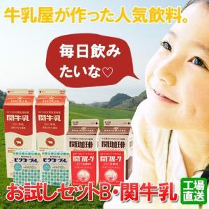 関牛乳お試しセットB(関牛乳・関珈琲・関フルーツ・ビタヨーグル)(送料無料)|hida-mino-furusato