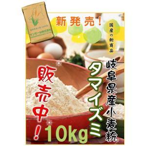 岐阜県産準強力粉(タマイズミ1等粉)10kg (送料無料)(工場直送) hida-mino-furusato 02