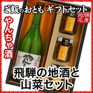 飛騨の地酒 本醸造 やんちゃ酒と山菜セット|hida-yama-sachi