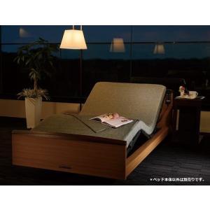 パラマウントベッド インタイム トラスト INTIME TRUST 電動ベッド シングル 送料 設置付き 日本製|hidatakayama-store