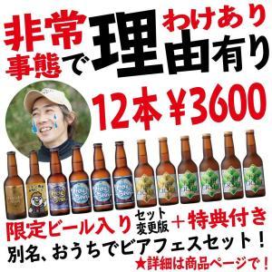 !コロナで訳あり12本3600円!商品一部入れ替わり!宮崎ひでじビール オンラインビアフェス抽選券付き! 最短10/31賞味期限 数量限定|hideji-beer