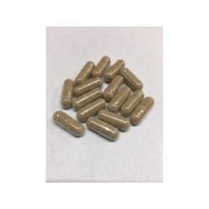 五種金剛 力丸 45粒入|higashida|02