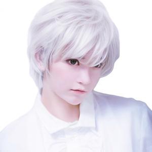 コスプレ用 ウィッグ 銀髪 白髪 ビジュアル higashiya