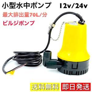 水中ポンプ 小型 12v ビルジポンプ 散水 給水 排水 船舶 ボート 海水対応 軽量