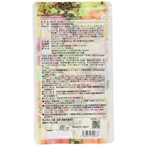 植物発酵エキス含有加工食品