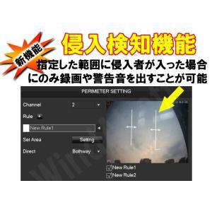 防犯カメラ レコーダー 顔検出 侵入検知機能 DVR AHD TVI CVR CVBS 規格のカメラを4台接続可能 監視カメラ 4ch 録画機 顔認識 NVR|highvalue|03