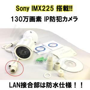 屋外用 IP 防犯カメラ Sony IMX225搭載 130万画素 IP66防水 監視カメラ  付属ソフトですぐに使える ブレット型防犯カメラ  IPカメラ|highvalue