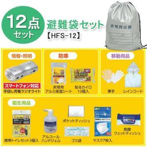 アイリスオーヤマ 避難グッズ 避難袋 12点セット 防炎加工...