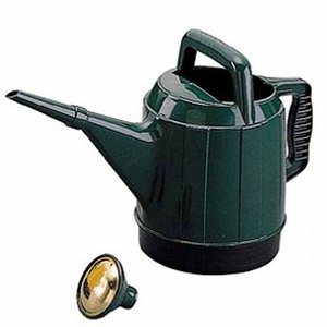 アイリスオーヤマ じょうろ ピッチャー ウォータリングポット グリーン NW-45L|hihshop