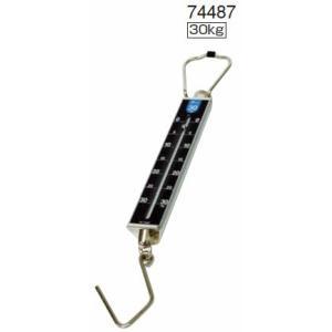 シンワ 手ばかり 平面目盛板 取引証明以外用 30kg  品番 74487|hikari-chyubo