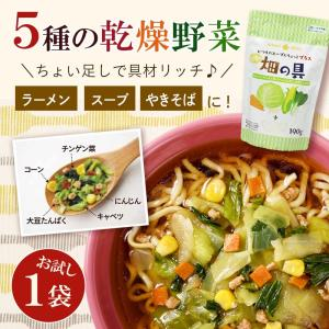 お試し1袋 乾燥野菜ミックス 畑の具190g  5種のスープの具 ドライ野菜 保存食 防災 具材 ラーメン やきそば インスタント