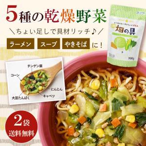 お試し2袋 5種の乾燥野菜ミックス190g 畑の具×2袋 お家 ラーメンの具 スープの具 やきそばの...