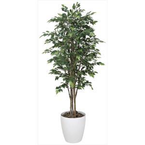 光触媒人工観葉植物 ロイヤルベンジャミン 1.6m hikarinorakuen