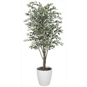 人工観葉植物 ベンジャミンツリー斑入り 1.8m hikarinorakuen