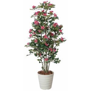 光触媒観葉植物 ブーゲンビリア 1.25m|hikarinorakuen