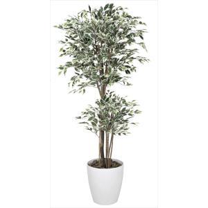 光触媒人工観葉植物 トロピカルベンジャミン斑入り 1.6m hikarinorakuen