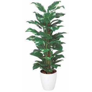光触媒観葉植物 ポトス 1.2m|hikarinorakuen