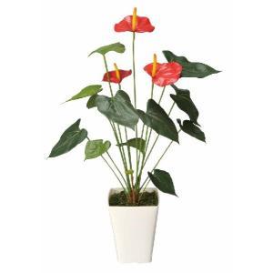 光触媒観葉植物 アートアンスリューム|hikarinorakuen