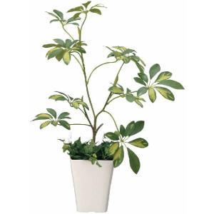 光触媒人工観葉植物 シェフレラ|hikarinorakuen