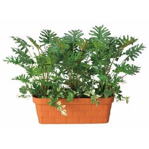 光触媒観葉植物 スプリットプランター|hikarinorakuen