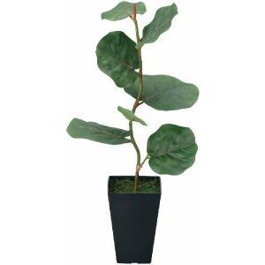 光触媒人工観葉植物 シーグレープ|hikarinorakuen