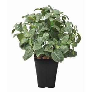 光触媒人工観葉植物 フィットニアM|hikarinorakuen