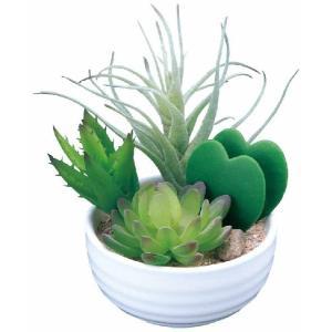 光触媒観葉植物 寄せ植えラブリー|hikarinorakuen