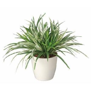 光触媒人工観葉植物 ドラセナミックス|hikarinorakuen