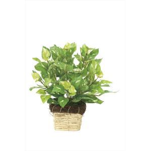 人工観葉植物 ミニポトス|hikarinorakuen