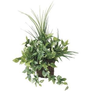 人工観葉植物 壁掛ナチュラルグラス|hikarinorakuen