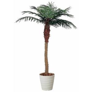 光触媒人工観葉植物 フェニックス 1.8m hikarinorakuen