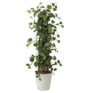 光触媒人工観葉植物 グレープツリー 1.2m|hikarinorakuen