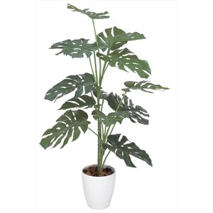 光触媒人工観葉植物 モンステラ1.2m hikarinorakuen