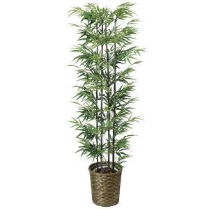 光触媒人工観葉植物 黒竹 1.6m|hikarinorakuen